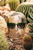 StuBru x KOMONO - The Jay Tropical